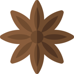 Star anise icon - Caronte Consulting